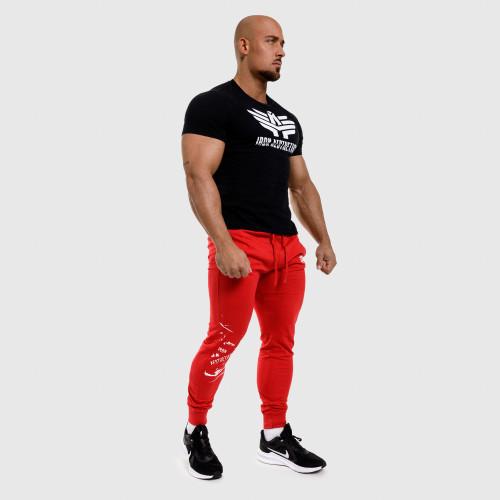 Fitness sťahovačky zápästia Iron Aesthetics, B&R