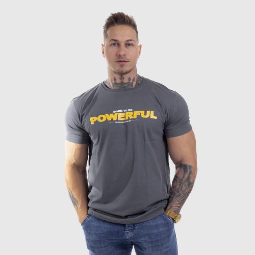 Ultrasoft tričko Iron Aesthetics Powerful, sivé