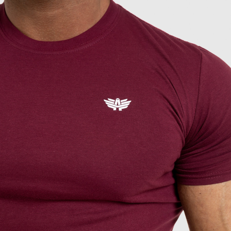 Pánske fitness tričko Iron Aesthetics Standard, bordové-5