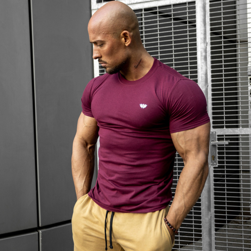 Pánske fitness tričko Iron Aesthetics Standard, bordové-4