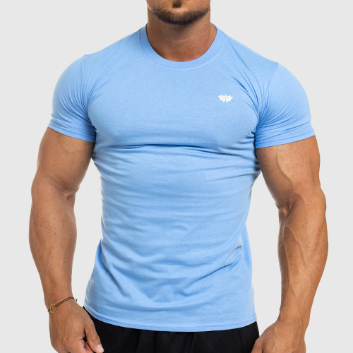 Pánske fitness tričko Iron Aesthetics Standard, modré