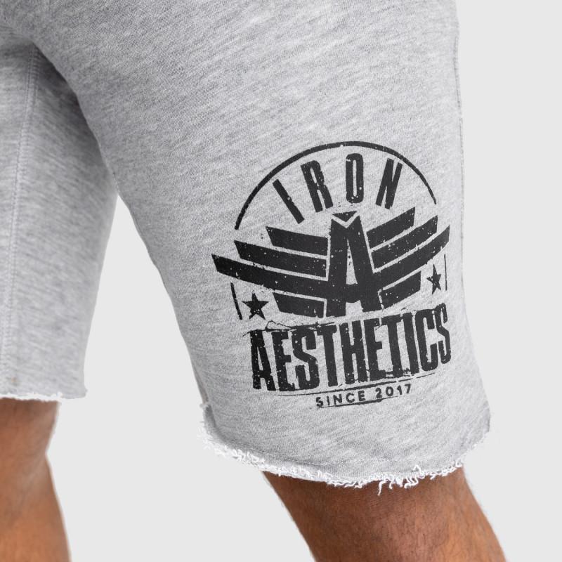 Pánske teplákové kraťasy Iron Aesthetics Force, sivé-5