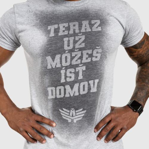 Pánske fitness tričko Iron Aesthetics Activated - SK, sivé