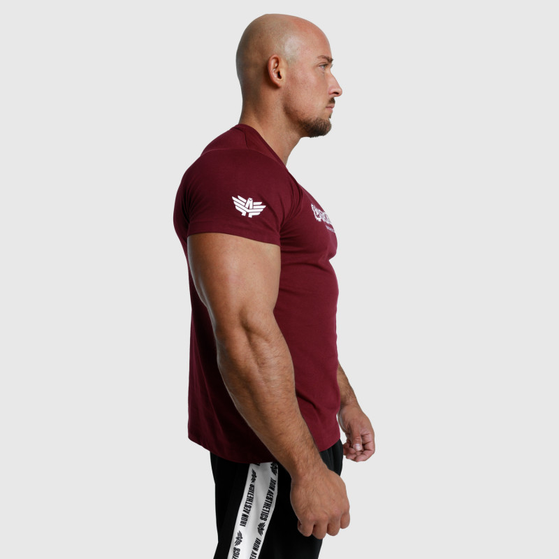 Pánske fitness tričko Iron Aesthetics Unbroken, bordové-6