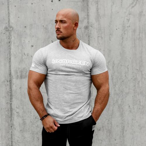 Pánske fitness tričko Iron Aesthetics Unbroken, sivé