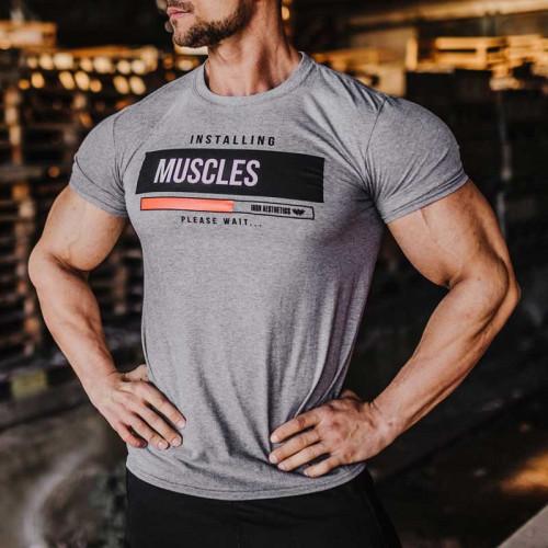 Pánske fitness tričko Iron Aesthetics Installing Muscles, sivé